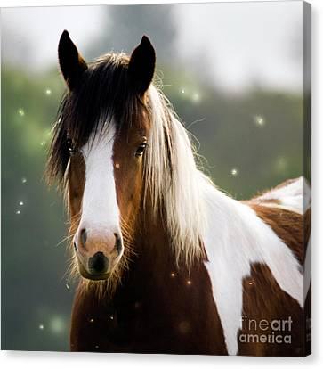 Fairytale Pony Canvas Print by Angel  Tarantella