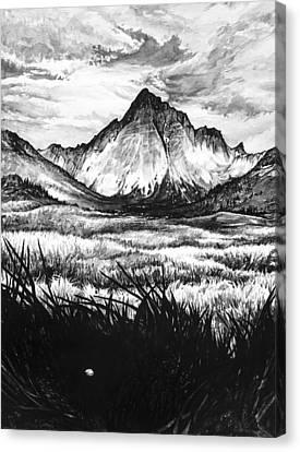 Faith As A Mustard Seed Canvas Print by Aaron Spong