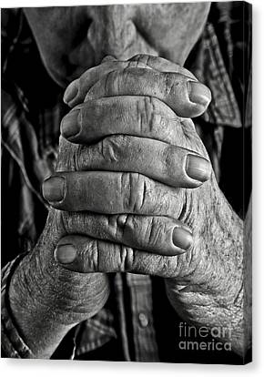Faithful Hands Canvas Print by Pattie Calfy