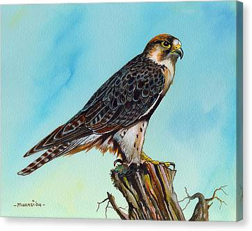 Canvas Print featuring the painting Falcon On Stump by Anthony Mwangi
