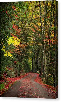 Stormy Weather Canvas Print - Fall 6 by Emmanuel Panagiotakis