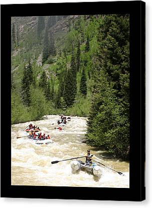 White Water Rafting On The Animas Canvas Print by Jack Pumphrey