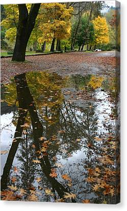 Canvas Print featuring the photograph Fall All The Way by Marie Neder