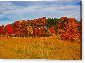 Canvas Print featuring the photograph Fall Along The Highway by Andy Lawless