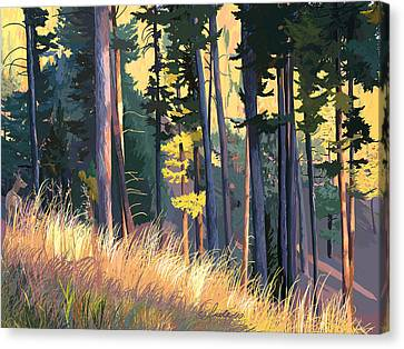 Fall Alpenglow Trees Grasses Canvas Print