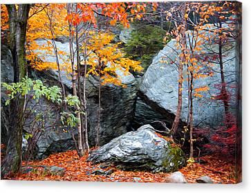 Fall Among The Rocks Canvas Print by Bill Howard