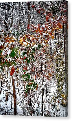 Winter Storm Canvas Print - Fall And Winter by John Haldane