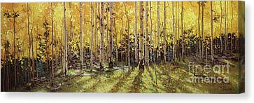 Fall Aspen Panorama Canvas Print by Gary Kim