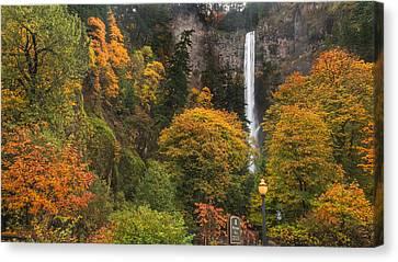 Fall At Multnomah Falls Canvas Print