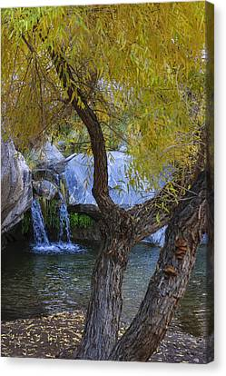 Palm Springs Canvas Print - Fall At Murray Falls I by Scott Campbell