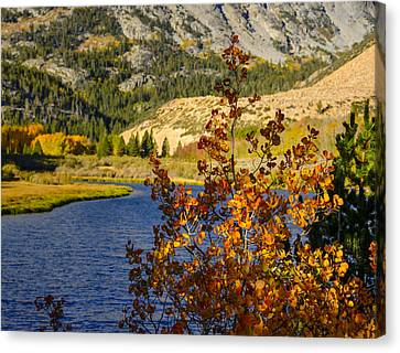 Fall At North Lake Canvas Print by Joe Doherty