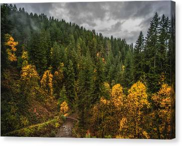 Canvas Print featuring the photograph Fall At Silver Falls by Dennis Bucklin