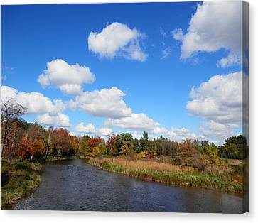 Fall At The Credit River Canvas Print by Pema Hou