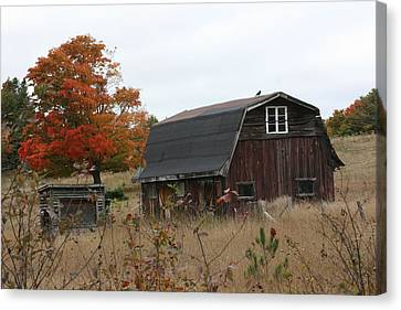 Canvas Print featuring the photograph Fall Barn by Paula Brown