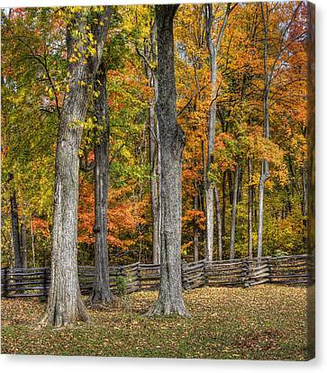 Canvas Print featuring the photograph Fall Color #1 by Wendell Thompson