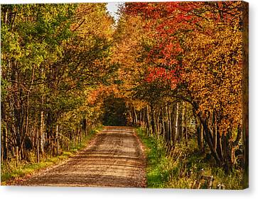 Canvas Print featuring the photograph Fall Color Along A Dirt Backroad by Jeff Folger