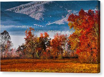 Fall Color Feast Canvas Print by Dave Bosse