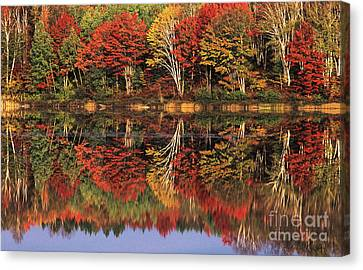 Canvas Print featuring the photograph Fall Color Reflected In Thornton Lake Michigan by Dave Welling