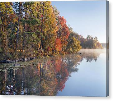 Fall Colors Along Lake Bailee In Petit Canvas Print by Tim Fitzharris