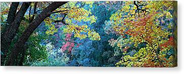 Fourth Of July Canvas Print - Fall Colors At Fourth Of July Canyon by Panoramic Images