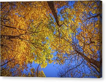 Fall Colors In The Sky  Canvas Print by LeeAnn McLaneGoetz McLaneGoetzStudioLLCcom