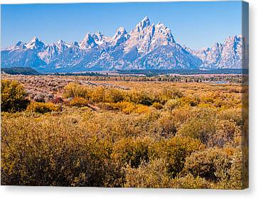 Canvas Print featuring the photograph Fall Colors In The Tetons   by Lars Lentz