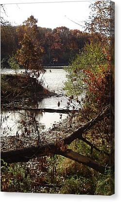 Canvas Print featuring the photograph Fall Colors by J L Zarek