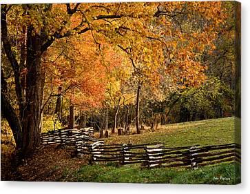 Fall Colors, Asheville, North Carolina Canvas Print by John Pagliuca