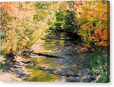 Fall Colors Canvas Print by Kathleen Struckle