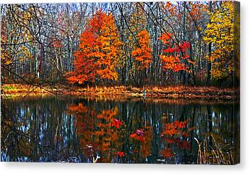 Fall Colors On Small Pond Canvas Print by Andy Lawless