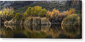 Fall Colors Reflections Canvas Print by Dave Dilli