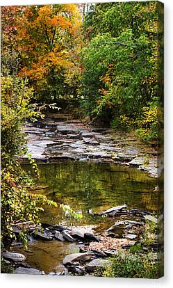Fall Creek Canvas Print by Christina Rollo