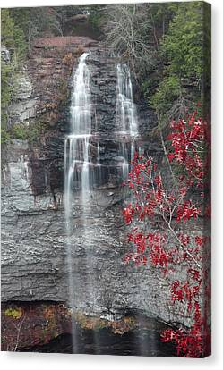 Fall Creek Falls  Canvas Print by Robert Camp