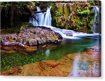 Fall Creek Oregon Canvas Print