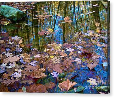 Fall Creek Canvas Print by Pamela Clements