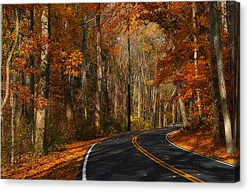 Canvas Print featuring the photograph Fall Curves by Andy Lawless