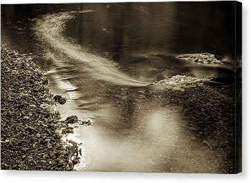 Fall Drift Canvas Print