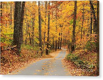 Canvas Print featuring the photograph Fall Drive by Geraldine DeBoer