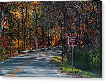 Fall Drive In Tennessee  1 Canvas Print by EricaMaxine  Price