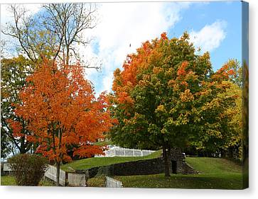 Canvas Print featuring the photograph Fall Foliage Colors 09 by Metro DC Photography