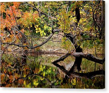 Fall From The Water Canvas Print