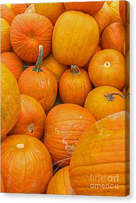 Fall Harvest Canvas Print by ELDavis Photography