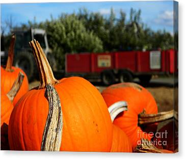 Fall Hayride Canvas Print by Andrea Anderegg