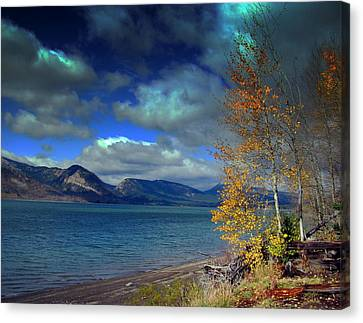 Canvas Print featuring the photograph Fall In Jackson Lake by Irina Hays