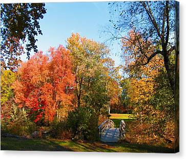 Fall In Lakewood Canvas Print by Roger Becker