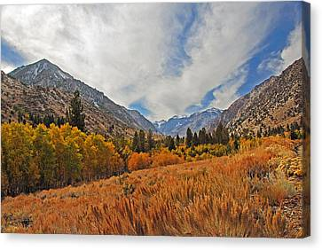 Fall In Lundy Canyon Canvas Print by Lynn Bauer