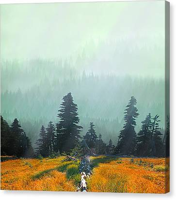 Fall In The Northwest Canvas Print by Jeff Burgess