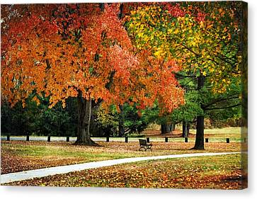 Fall In The Park Canvas Print by Christina Rollo