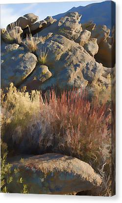 Painterly Canvas Print - Fall In The Santa Rosas by Scott Campbell
