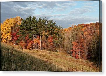 Canvas Print featuring the photograph Fall In The Valley by Daniel Behm